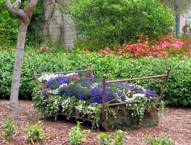 20 cách tạo luống hoa đẹp như chốn mê cung cho khu vườn mùa hè - Ảnh 17.