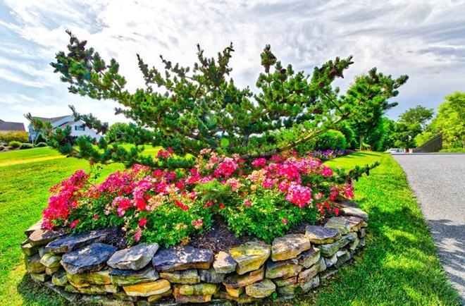20 cách tạo luống hoa đẹp như chốn mê cung cho khu vườn mùa hè - Ảnh 20.