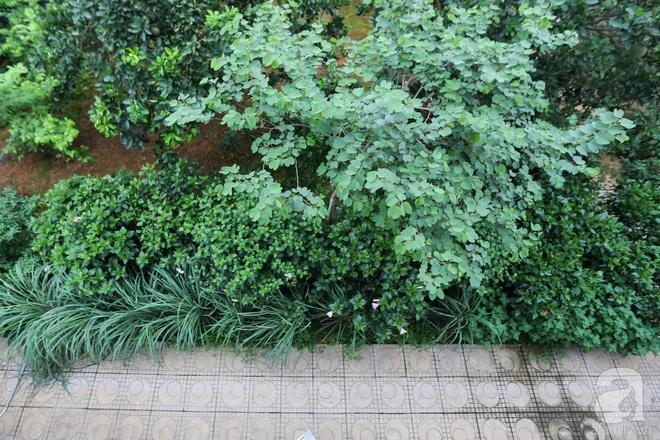 Sau mọi ánh hào quang của sân khấu, NSND Thanh Hoa sống bình yên bên nhà vườn rộng 1000m² - Ảnh 21.
