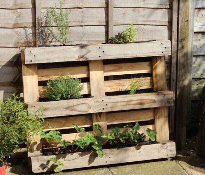 Những cách đơn giản để tạo nên khu vườn đẹp tuyệt từ gỗ pallet - Ảnh 7.