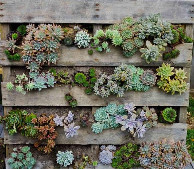 Những cách đơn giản để tạo nên khu vườn đẹp tuyệt từ gỗ pallet - Ảnh 10.