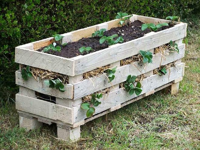 Những cách đơn giản để tạo nên khu vườn đẹp tuyệt từ gỗ pallet - Ảnh 12.