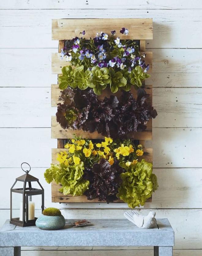 Những cách đơn giản để tạo nên khu vườn đẹp tuyệt từ gỗ pallet - Ảnh 13.