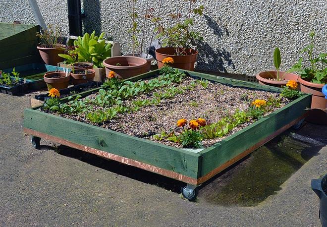 Những cách đơn giản để tạo nên khu vườn đẹp tuyệt từ gỗ pallet - Ảnh 14.