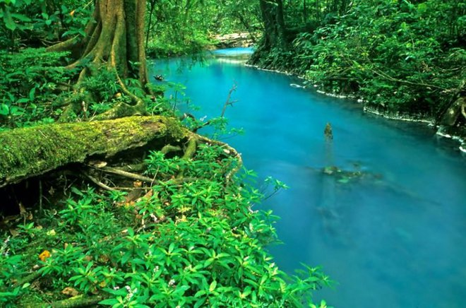 Bí mật của dòng sông ngọc lam huyền ảo từng đánh lừa các nhà khoa học - Ảnh 1.