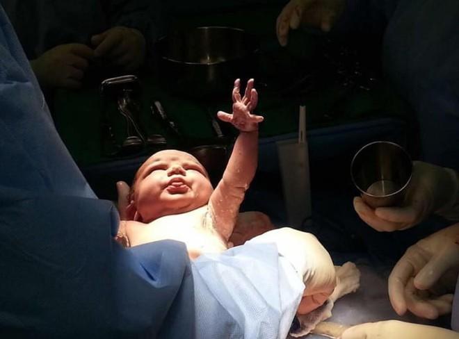Khoảnh khắc những em bé chào đời chạm tới trái tim hàng triệu người - Ảnh 5.