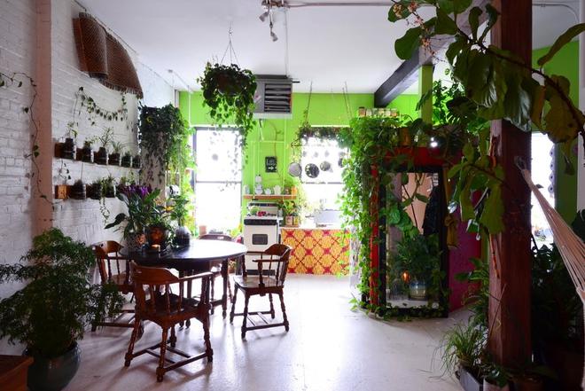 Cô gái độc thân biến căn hộ nhỏ ở chung cư cao tầng của mình thành vườn cây trong phố - ảnh 2