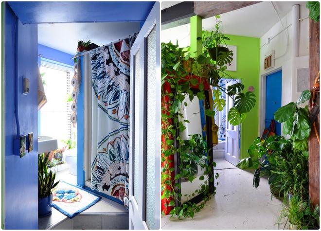Cô gái độc thân biến căn hộ nhỏ ở chung cư cao tầng của mình thành vườn cây trong phố - ảnh 3