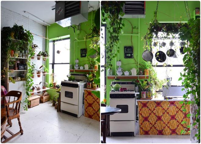 Cô gái độc thân biến căn hộ nhỏ ở chung cư cao tầng của mình thành vườn cây trong phố - ảnh 4