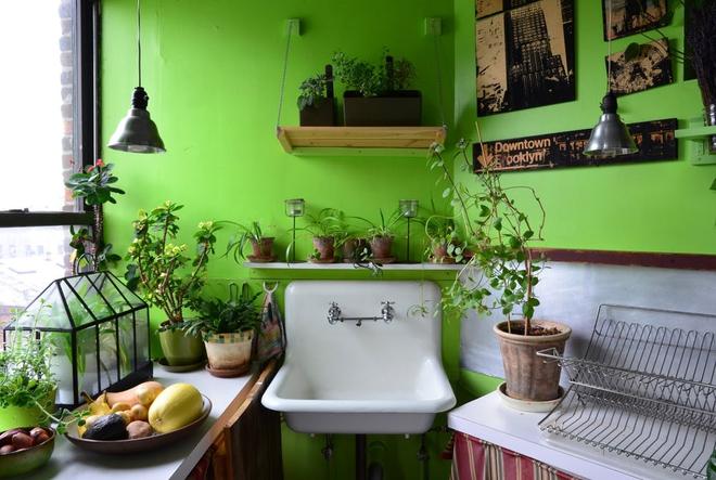 Cô gái độc thân biến căn hộ nhỏ ở chung cư cao tầng của mình thành vườn cây trong phố - ảnh 5