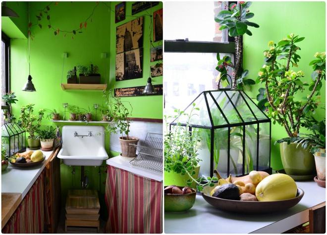 Cô gái độc thân biến căn hộ nhỏ ở chung cư cao tầng của mình thành vườn cây trong phố - ảnh 6