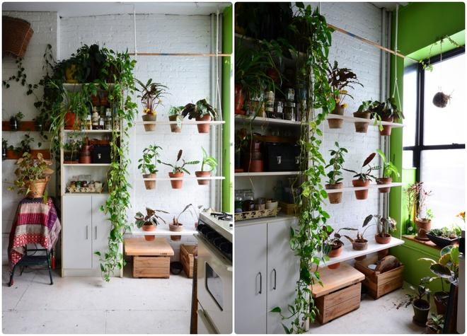 Cô gái độc thân biến căn hộ nhỏ ở chung cư cao tầng của mình thành vườn cây trong phố - ảnh 7