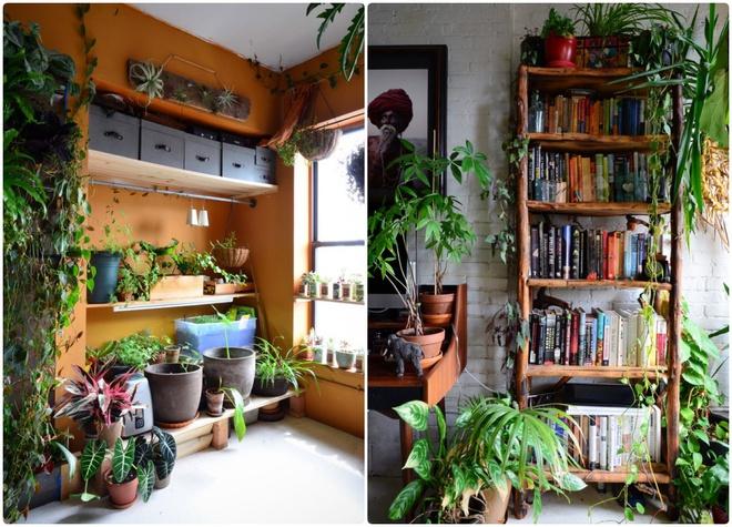 Cô gái độc thân biến căn hộ nhỏ ở chung cư cao tầng của mình thành vườn cây trong phố - ảnh 8