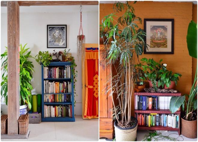 Cô gái độc thân biến căn hộ nhỏ ở chung cư cao tầng của mình thành vườn cây trong phố - ảnh 9