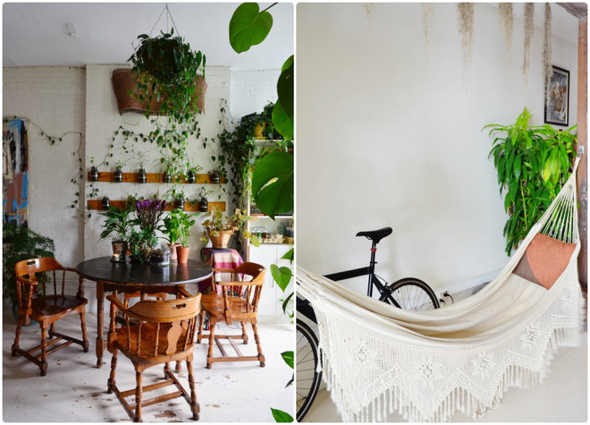 Cô gái độc thân biến căn hộ nhỏ ở chung cư cao tầng của mình thành vườn cây trong phố - ảnh 13