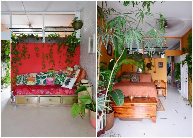 Cô gái độc thân biến căn hộ nhỏ ở chung cư cao tầng của mình thành vườn cây trong phố - ảnh 14