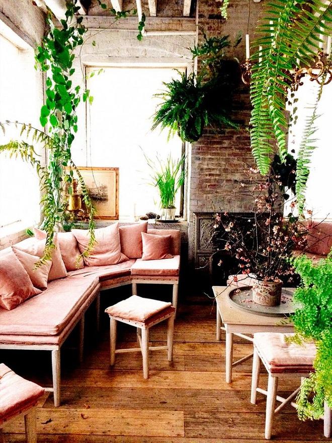 Gợi ý trang trí nhà với gam màu hồng nhạt dịu dàng - Ảnh 13.