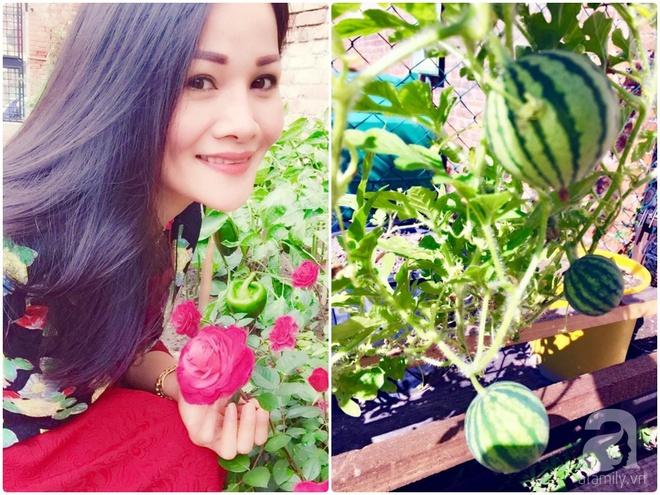 Khu vườn bạt ngàn hoa và rau quả sạch của bà chủ cửa hàng pha lê người Việt trên đất Ý - Ảnh 2.
