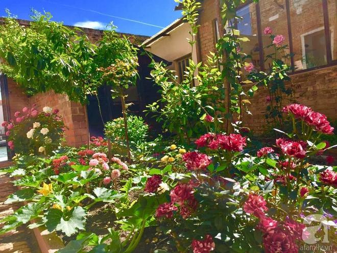 Khu vườn bạt ngàn hoa và rau quả sạch của bà chủ cửa hàng pha lê người Việt trên đất Ý - Ảnh 5.