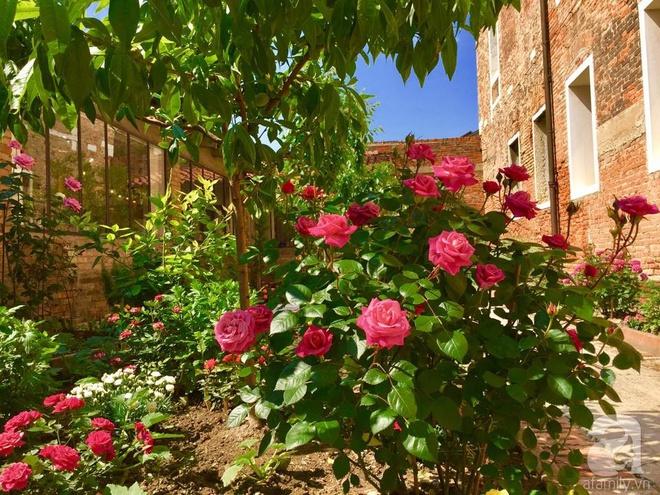 Khu vườn bạt ngàn hoa và rau quả sạch của bà chủ cửa hàng pha lê người Việt trên đất Ý - Ảnh 13.
