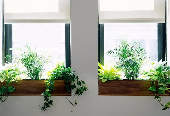 Phòng trang trí tuy đơn giản vẫn lung linh khi làm đẹp khung cửa sổ với 7 ý tưởng độc lạ này - Ảnh 1.