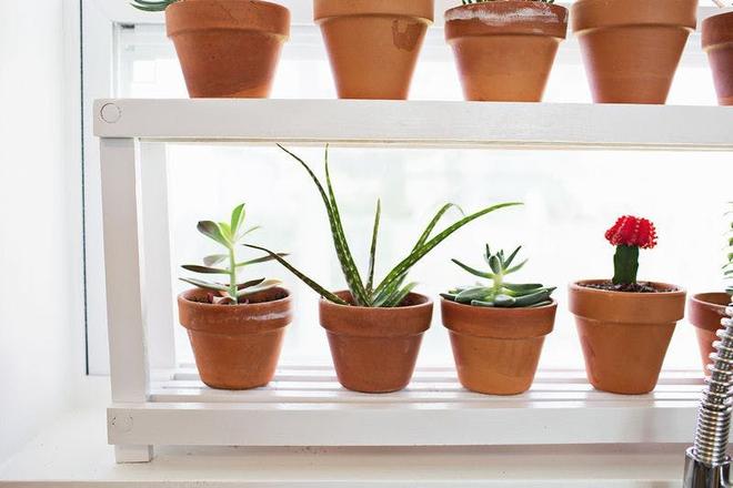 Phòng trang trí tuy đơn giản vẫn lung linh khi làm đẹp khung cửa sổ với 7 ý tưởng độc lạ này - Ảnh 4.