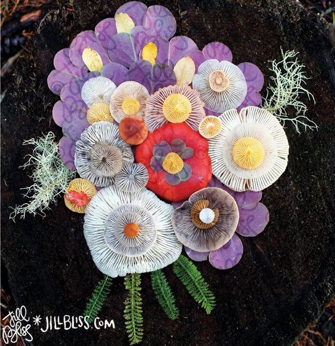 Thì ra trên Trái đất còn có những cây nấm rực rỡ sắc màu đẹp hơn cả hoa thế này - Ảnh 7.