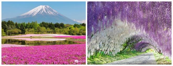 Những vùng đất đẹp đến lạ thường hiện diện trên Trái đất mà nhiều người chưa từng nghe đến - Ảnh 2.
