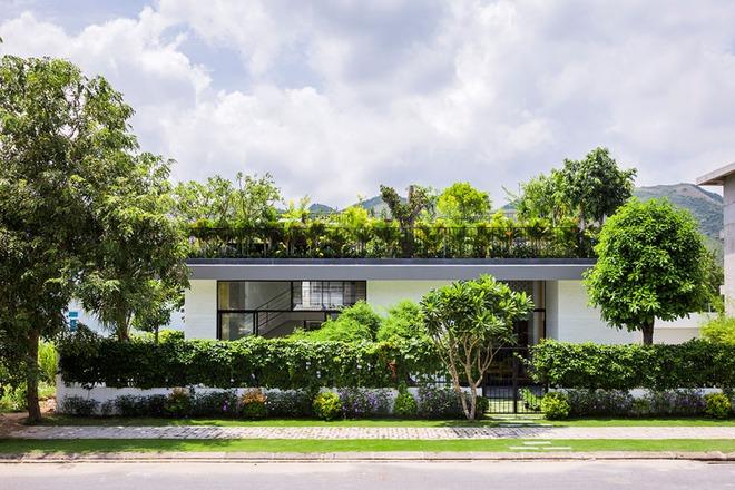 6 cách thiết kế sân thượng vừa đẹp vừa hữu ích bạn không nên bỏ qua - Ảnh 20.