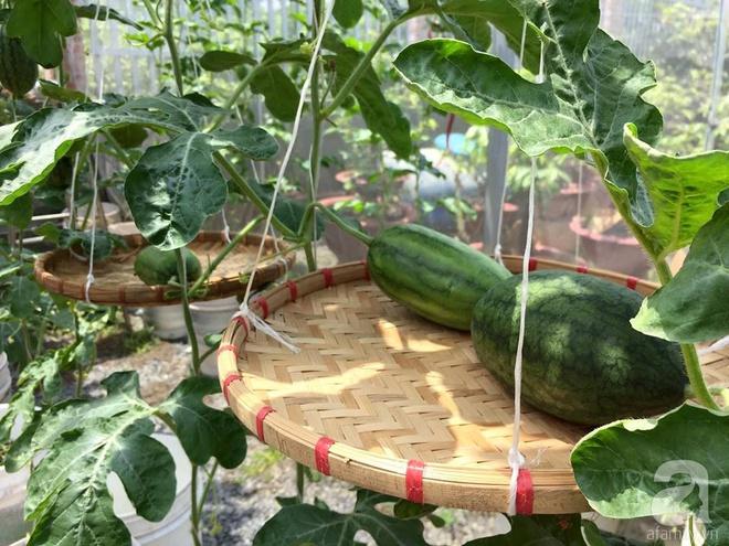 Choáng ngợp trước khu vườn trên sân thượng đầy rau sạch, gà ngon của anh chồng đảm Sài Thành - Ảnh 17.