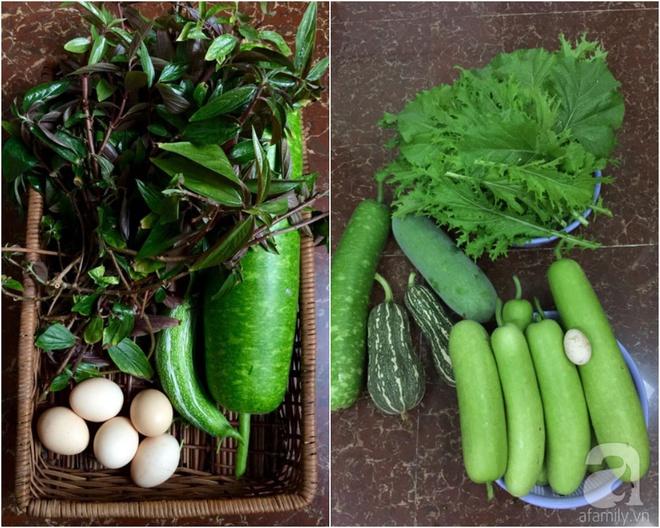 Choáng ngợp trước khu vườn trên sân thượng đầy rau sạch, gà ngon của anh chồng đảm Sài Thành - Ảnh 24.