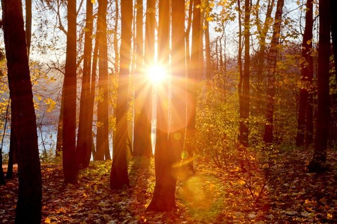 Xem những hình ảnh này mới thấy mùa thu ở đâu cũng đẹp không lời nào tả hết - Ảnh 5.