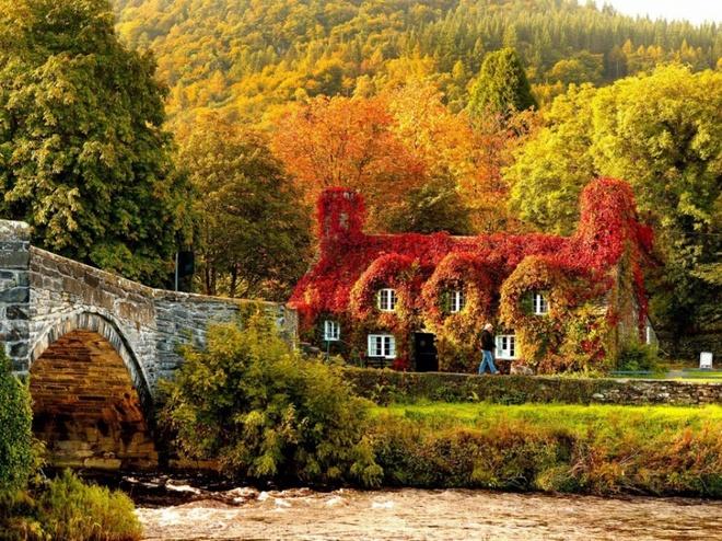Xem những hình ảnh này mới thấy mùa thu ở đâu cũng đẹp không lời nào tả hết - Ảnh 6.