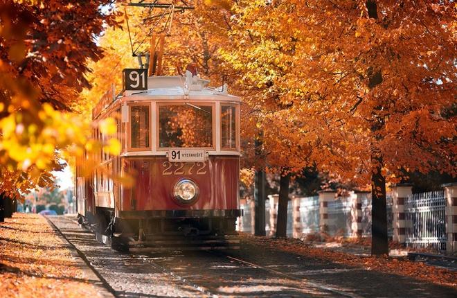 Xem những hình ảnh này mới thấy mùa thu ở đâu cũng đẹp không lời nào tả hết - Ảnh 10.