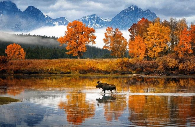 Xem những hình ảnh này mới thấy mùa thu ở đâu cũng đẹp không lời nào tả hết - Ảnh 17.