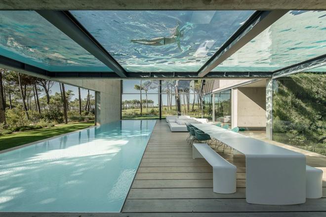 Biệt thự vườn cực chất với bể bơi đáy kính trong suốt trên trần nhà - Ảnh 1.