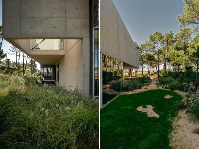 Biệt thự vườn cực chất với bể bơi đáy kính trong suốt trên trần nhà - Ảnh 14.