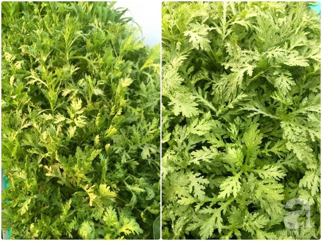 Hàng ngày tiếp xúc với bệnh nhân ung thư, nữ dược sĩ quyết trồng 100 chậu rau sạch xanh trên sân thượng cho gia đình - Ảnh 17.