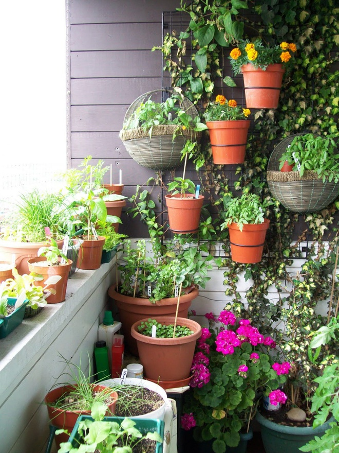 Ban công nhỏ biến thành khu vườn xanh mát đẹp hút ánh nhìn với những ý tưởng đơn giản không ngờ - Ảnh 4.