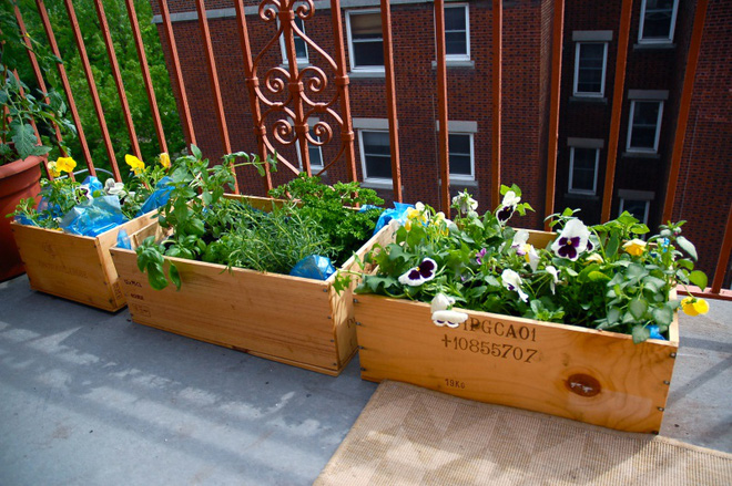 Ban công nhỏ biến thành khu vườn xanh mát đẹp hút ánh nhìn với những ý tưởng đơn giản không ngờ - Ảnh 9.