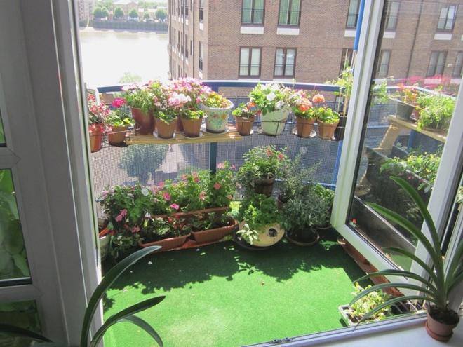 Ban công nhỏ biến thành khu vườn xanh mát đẹp hút ánh nhìn với những ý tưởng đơn giản không ngờ - Ảnh 20.
