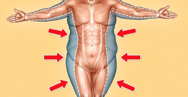 Biết được những điều này bạn sẽ thấy cơ thể mình thật diệu kỳ - Ảnh 4.