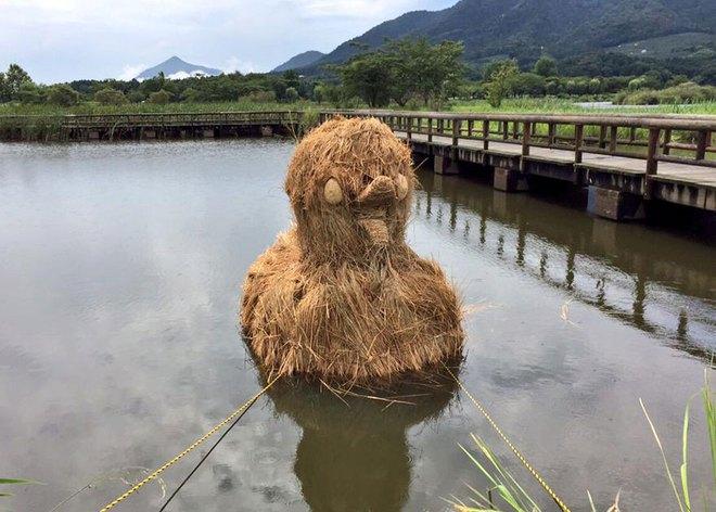 Chỉ với những cọng rơm khô, người Nhật tạo nên nhiều thứ khiến ai cũng thán phục - Ảnh 14.