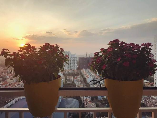 Ngắm căn hộ góc nào cũng lãng mạn và ngọt ngào với hoa tươi của hoa hậu Phạm Hương - Ảnh 24.