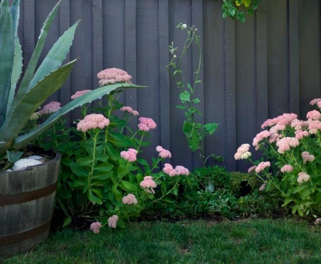 Cải tạo góc sân vườn đẹp bình yên và rực rỡ hoa lá nhờ ý tưởng độc đáo - Ảnh 11.