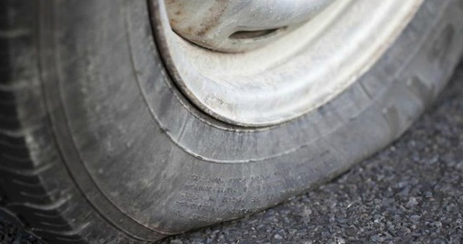 Only thanks to a tire wheel tire that scientists discovered the miracle - Photo 2.