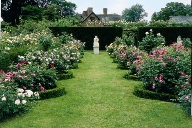 Khu vườn hoa hồng đẹp hơn cổ tích của người đàn ông được phong danh là Vĩ nhân hoa hồng của thế giới - Ảnh 2.