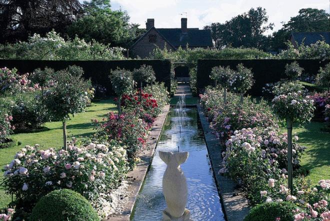 Khu vườn hoa hồng đẹp hơn cổ tích của người đàn ông được phong danh là Vĩ nhân hoa hồng của thế giới - Ảnh 3.