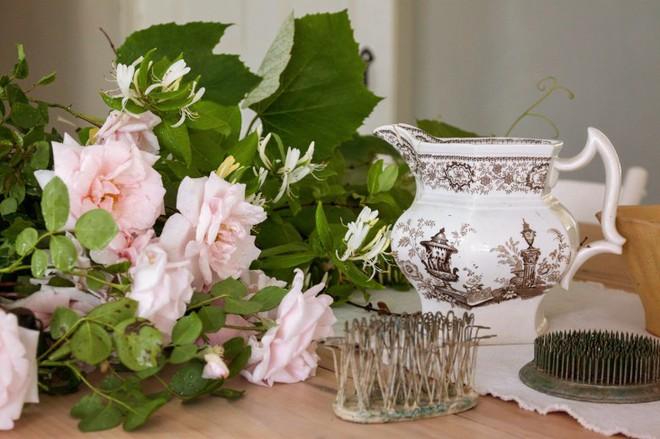 Kinh nghiệm tạo giàn hoa leo đẹp như trong mơ của cặp vợ chồng yêu hoa - Ảnh 6.