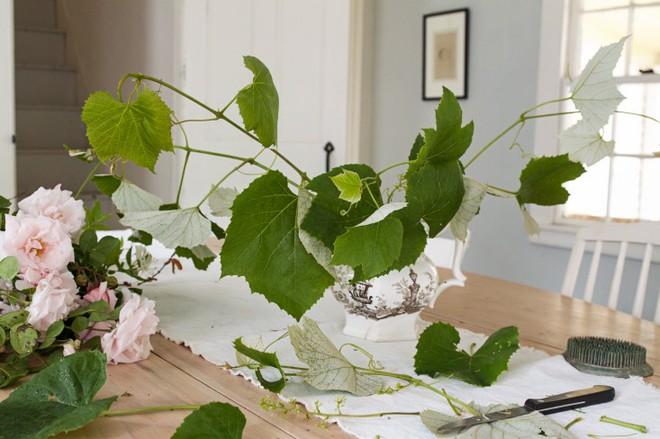 Kinh nghiệm tạo giàn hoa leo đẹp như trong mơ của cặp vợ chồng yêu hoa - Ảnh 7.